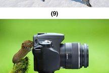 fotografowie swiata