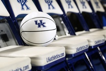 Kentucky Wildcats & Basketball  / by Ginger Norsworthy