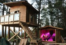 BC Bud Depot (Custom Wood Grow Rooms) / Custom wood grow rooms out in the woods. Licensed medical marijuana grower.  Visit www.bcbuddepot.com to buy your marijuana/cannabis seeds for 2016!