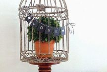 •birdcages• / by {shanda}