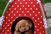 Tent for cleo my cat