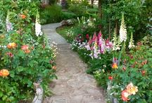 Garden ideas / Inspiration for my long narrow garden, want a cottage, country, wild feel !