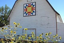 Barn Quilts, Hex Signs & Murals / by Carol Edwards