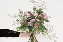 B O U Q U E T S / Bouquets by Blombox