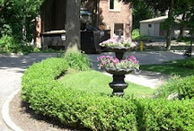 LANDSCAPING / by Sher-ree Beekman