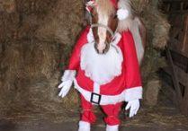Christmas Costumes / Christmas Costumes