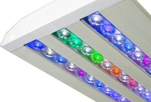 Led Lighting / by Aquarium Specialty