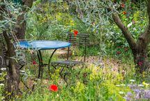RHS Chelsea Flower Show 2015 - Our Highlights / We couldn't attend, but that doesn't mean we've not been in awe of the amazing gardens and floral displays all week!