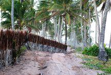 Terraços Marinhos - Maraú