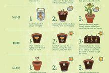 Gardening Look