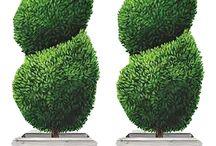 drzewa,krzewy