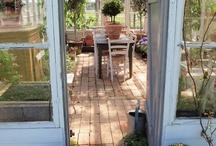 Garden / Garden beauty and tips:)