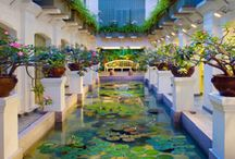 Asian Hotels / Our favorite hotels in major Asian cities.