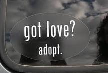 Orphan Care/Adoption / by Erin Sullivan Kadey
