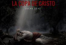 ¿Qué significa la copa de Cristo?