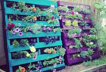 always love hanging pallet garden, Sam's Summer project / This is the gift I'm asking Sam to make  this Summer.