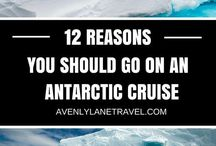 Antarctic & Arctic diorama