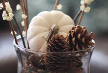 Fall time decor / by Andrea Fletcher
