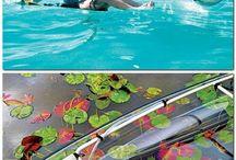 Canoe | Gear/Canoes/Canoeing
