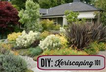 Landscaping / All you need to know about landscaping, from designing your outdoor space to landscape lighting.