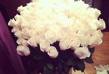 FLOWERS  ❁