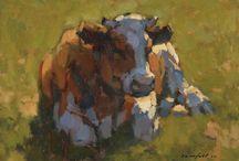 koe in de zon