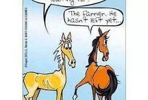 Farrier funny