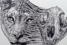 Animals Leaving Their Skeletons Behind In These Amazing Dark Illustrations