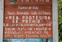 Colombia - Parque Regional Natural Tatamá. / Biodiversidad