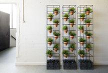 separation vegetal