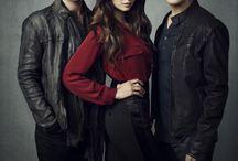 Vampire diaries / Love the seasons