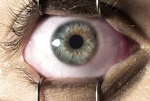'A través de sus ojos'
