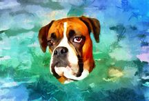 Dry oil dog paintings / Beautiful paintings of dogs.