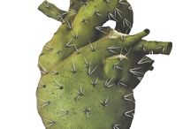 Cacti love / All things prickly