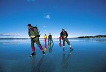 Falun Borlänge-regionen / Falun Borlänge-regionen har 165.000 invånare mitt i hjärtat av Sverige. Här går tusenåriga traditioner och revolutionerande nytänkande hand i hand. Hos  oss finns allt från små intressanta uppstickare till stora organisationer och världsledande högteknologiska företag. Här finns vackra boendemiljöer och möjligheter till rik fritid. Här trivs människor. Här har vi samlat bilder som för oss symboliserar Falun Borlänge-regionen. Välkommen!