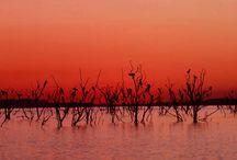 Zimbabwe Pics
