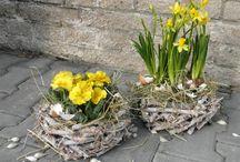 jaro / jarní