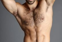 Niles Demarco