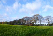 Wandelen in de Achterhoek / In de Achterhoek is het ook mooi en er zijn diverse wandelingen met name op en rond landgoederen.