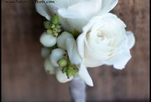 White Florals / by Audrey