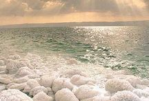 the dead sea / by Beckey Douglas