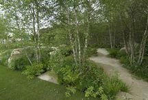 Lesní zahrady