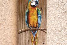 madeira pintada