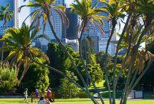 AUSTRALIË / In mei 2013 ben ik er 5 weken geweest. We hebben een reis gemaakt langs de oostkust van Cairns naar Sydney. Een onvergetelijke reis.