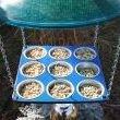 bird feeders / by Claudia Nelson
