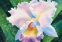 art/watercolor flowers / by Tisha Sheldon