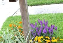 Practical landscape ideas / by Anise Rae