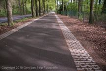 Rijksweg N317