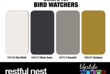 Colors for Bird Watchers / Our Lifestyle Color Series has a color combination for just about anyone. Whether you are an avid bird watcher or a lover of all things fashion we have a color series just for you!  / by CertaPro Painters®