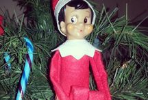 Elf on the Shelf 2013  / by Jamie Kaye